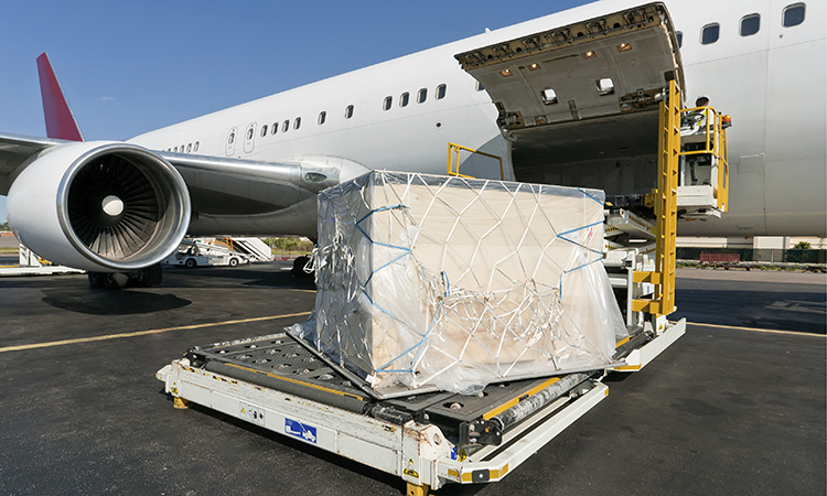 Cargo Skills and Procedures